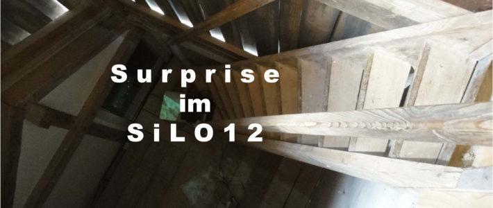 Ausstellung Surprise im SiLO12